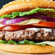Hamburger Campagnolo